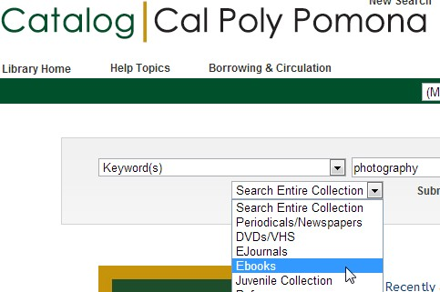 Screen shot from the Library Catalog
