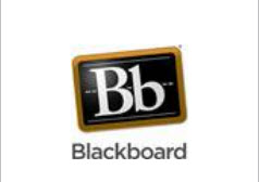 Blacboard Course Management Logo